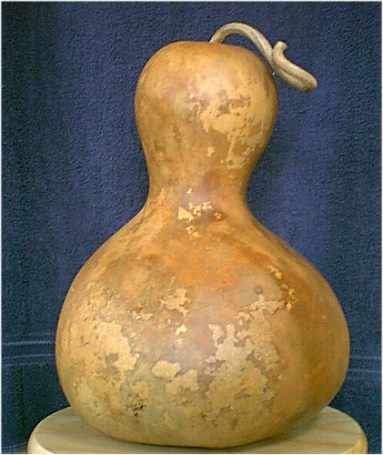 dried gourd example